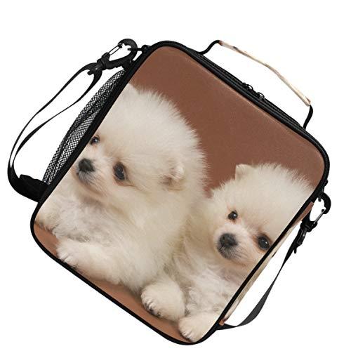 Heren warme koeler twee puppy's van de spitse hond voor picknick lunch tas schouder verstelbare riem geïsoleerd