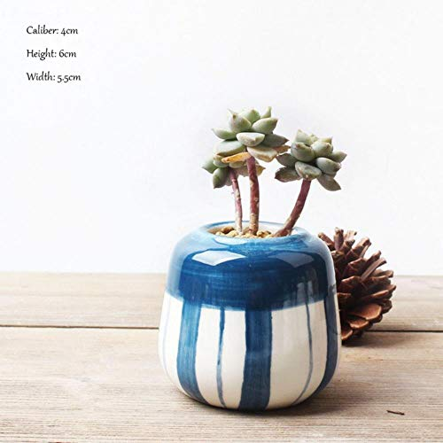 YUCHAO Keramik Blumentopf, kreative Handbemalte Sukkulenten Blumentopf,...