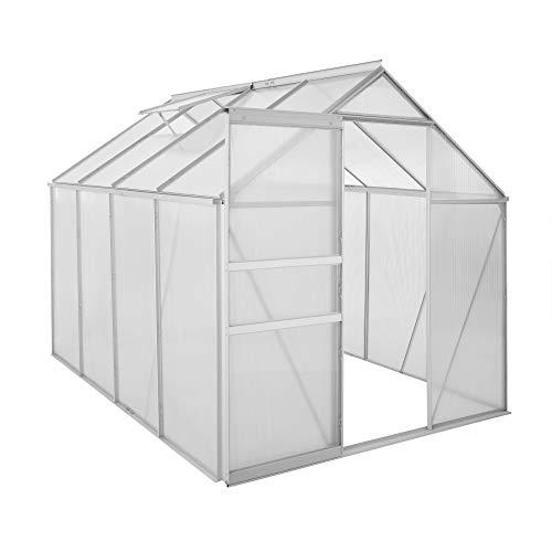 Zelsius Aluminium Gewächshaus für den Garten | 250 x 190 cm | 4 mm Platten | Vielseitig nutzbar als Treibhaus, Tomatenhaus, Frühbeet und Pflanzenhaus
