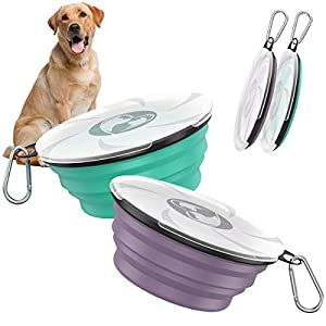 Pawaboo Collapsible Dog Bowls 2 Pack, Silicone Feeding Watering Bowls with Lids & Carabiners for Dogs Cats, Portable Water Feeder Food Bowl for Walking Traveling Home Use, 1000ml, Violet+Turquoise
