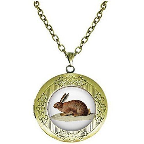 Collar con medallón de conejo marrón – Joyería de conejo – Liebre salvaje – Liebre marrón – Collar vintage de conejo