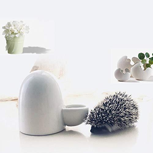 PanDaDa Mini Automatischer Keramik Wasserspender für kleine Tiere, Trinkwasserflaschen Lebensmittelspender für Vogel/Igel/Hamster/Chinchilla