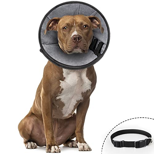 Dog Cones Soft Cone for Dogs After Surgery Dog Recovery Collar Cone for Large Medium Small Dogs and Cats, Prevent Pet Biting Licking Scratching and Wound Healing (Bonus with 1 Free Dog Collar)