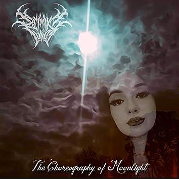 The Choreography of Moonlight