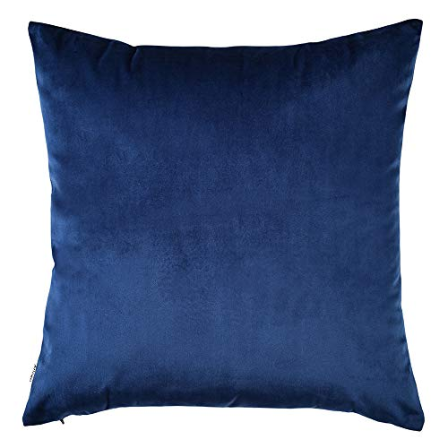 Artcest Cozy Solid Velvet Throw Pillow Case, Decorative Couch Cushion Cover, Soft Sofa Euro Sham with Zipper Hidden, 22' x22 (Royal Blue)