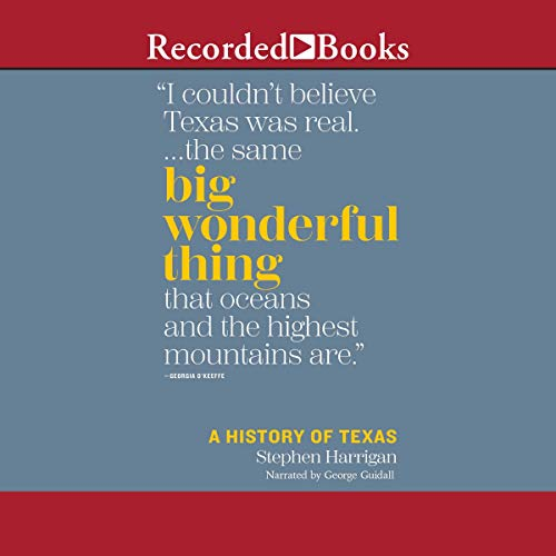 Big Wonderful Thing  By  cover art