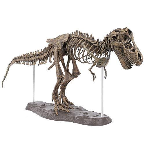 tongchuang Juguete grande con diseño de calavera fósil de dinosaurio, diseño de Tyrannosaurus Rex para montar el esqueleto de los artículos de decoración (color de foto)