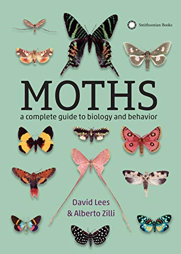 Moths: A Complete Guide to Biology and Behavior