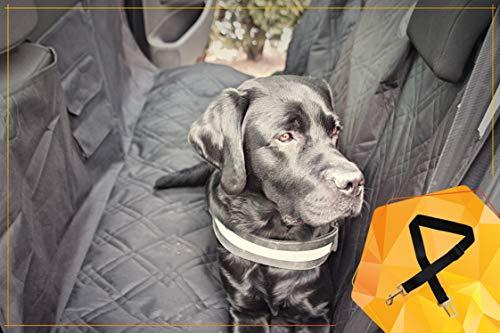 Bee more dog Hundedecke - abwaschbare Auto-Schondecke und Hängematte für den Hund - Universalgröße für die Rückbank - bequem, kratzfest und rutschfest