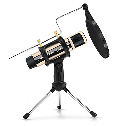 ZealSound Condenser Recording Microphone, Tripod Stand Built-in Sound Card Echo For Studio Broadcast Live Stream ASMR Game Voice Cover Karaoke Zoom Smule Anchor Memo Garageband Tiktok & YouTube (Gold)