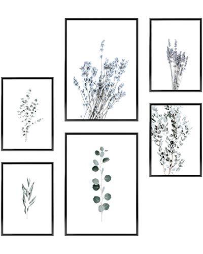 Heimlich Cuadros Decorativos - SIN Marcos - Decoración Colgante para Paredes de Sala, Dormitorios y Cocina - Arte Mural - 2 x A3 (30x42cm) et 4 x A4 (21x30cm) | »Eucalipto y Lavanda «