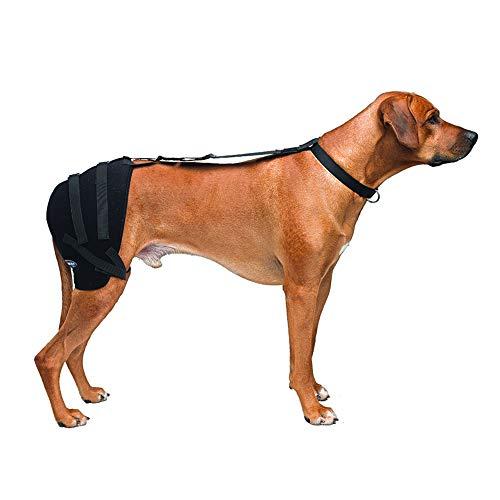 Caldera International Pet Therapy Hip Wrap with Gel, Large, Black (PET303)
