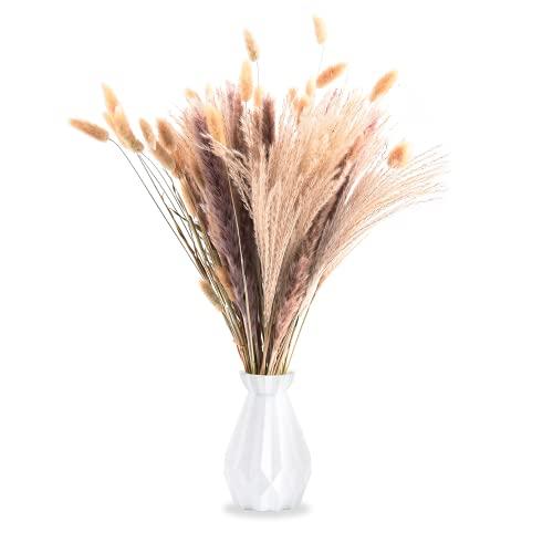 FORMIZON Erba della Pampas, Piume Erba Della Pampa, Boho Secchi Decorativi Bouquet 35 pezzi, Fiore di Canne Essiccata Pampas per Composizioni Fiori Decorazione Casa