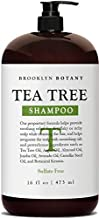 Brooklyn Botany Tea Tree Oil Shampoo For Dry Itchy & Flaky Scalp - Sulfate Free Hair Cleanser - Free Pump & Flip Cap Included - 16 oz