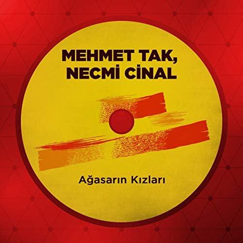 Necmi Cinal & Mehmet Tak