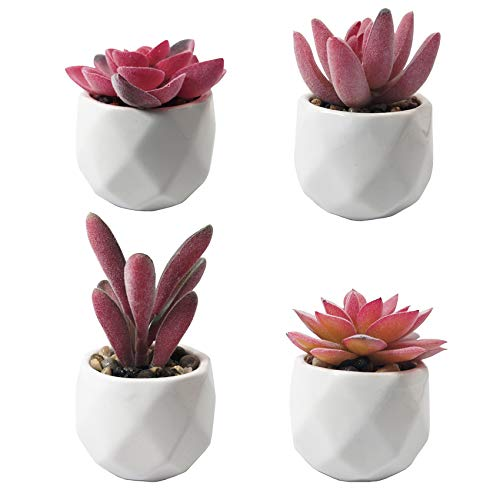 SAJANDAS Pequeñas plantas suculentas artificiales con macetas, 4 unidades, color rosa artificial en macetas de cerámica blancas para decoración de oficina, sala de estar, alféizar de ventana