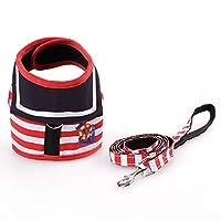 犬の鎖、小型犬用の調整可能なハーネス、犬の首輪の鎖のセット、ネイビーブルーのスタイルの安全胸ストラップの鎖