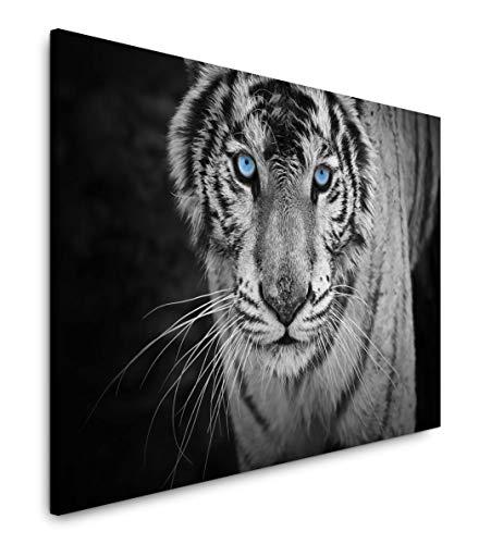Paul Sinus Art Weißer Tiger 120x 80cm Inspirierende Fotokunst in Museums-Qualität für Ihr Zuhause als Wandbild auf Leinwand in