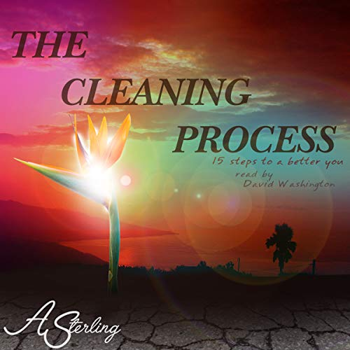 The Cleaning Process: 15 Steps to a Better You audiobook cover art