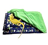 Bearded Dragon Bed with Pillow and Blanket, Reptile Accessories, Small Pet Animal Hide Habitat Shelter, Solf Fabric Warm Sleeping Bag with Cover for Bearded Dragon, Leopard Gecko, Lizard