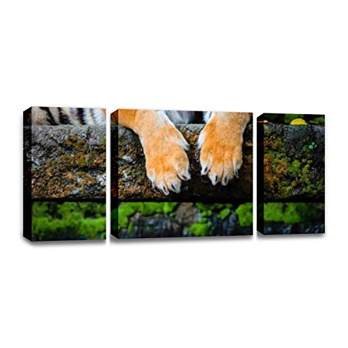 CCArtist Close up of Bengal Tiger Paws Fierce Tigers and Pictures Wall Decoration Print Photo on Canvas Modern Photography Home Decor Modern Canvas Painting Wall Art