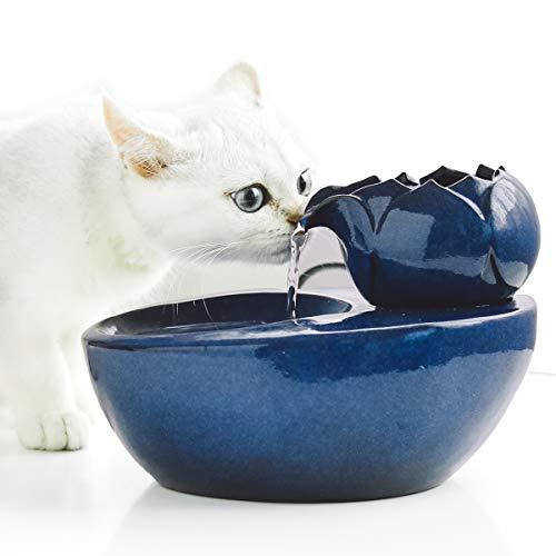 DINGQU Lotus Cat Water Fountain