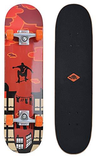 Schildkröt -   Skateboard Kicker