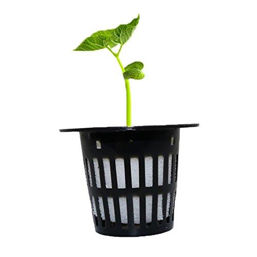Adhere To Fly Lot de 30 pots de fleurs pour plantes - Pour débutant et élévation - Noir