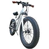 Ylight 26 Pulgadas Bicicleta De Montaña Eléctrica 36V / 250W / 13A Ebike Gordo Bicicleta Eléctrica del Neumático De Nieve Bicicleta Eléctrica De Playa para Nieve