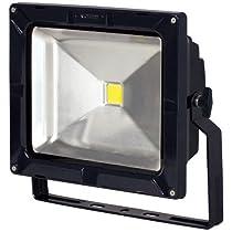 日動工業 LEDカラーエコナイター50 発光色:青 明るさ:5000lm 防雨型 LEN-50D-DB-B