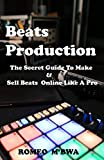 The Secret Guide to Make & Sell Beats Online Like a Pro (English Edition)