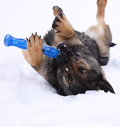 CEESC『犬歯磨きスティックM』