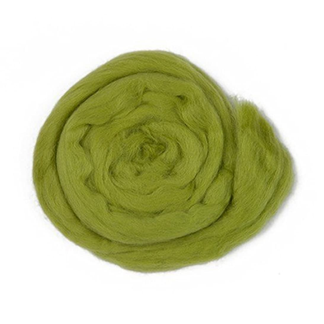 Kartopu Felt Wool 1.76 Oz (50g) Needle Felting Wool Roving, 100% Wool (Green - K442)