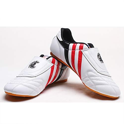 Meng Zapatos Deportivos de Taekwondo Zapatilla Ligera de Artes Marciales para Taekwondo, Boxeo, Karate, Kung Fu, Taichi (Color : White, Size : 45)