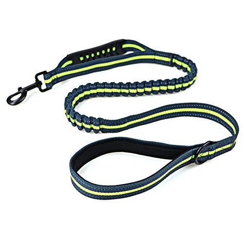 Jogging-Hundeleine,Premium Leine für Kleine und Große Hunde mit Flexi Dämpfung | Robuste Hunde-Leine zum Joggen, Spazieren, Gassi, Fahrrad Fahren,01