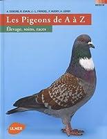 Le pigeon de a à z