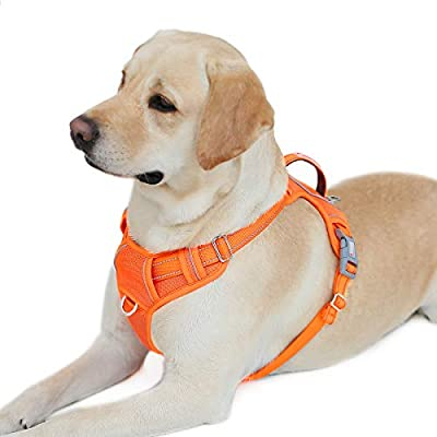 BARKBAY No Pull Dog Harness Front Clip Heavy Duty Reflective Easy Control Handle for Large Dog Walking with ID tag Pocket(Orange,L) by BARKBAY