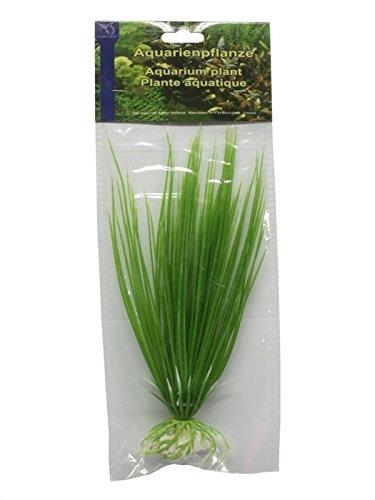 Kunststoffpflanze Eleocharis acicularis 20cm / Wasserpflanze Aquarium Künstliche Pflanze