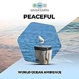Peaceful World Ocean Ambience