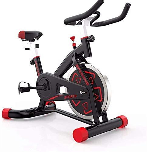HNWTKJ Bicicleta Estáticas para Fitness, Bici de Spinning, Calidad Profesional, Rueda de...