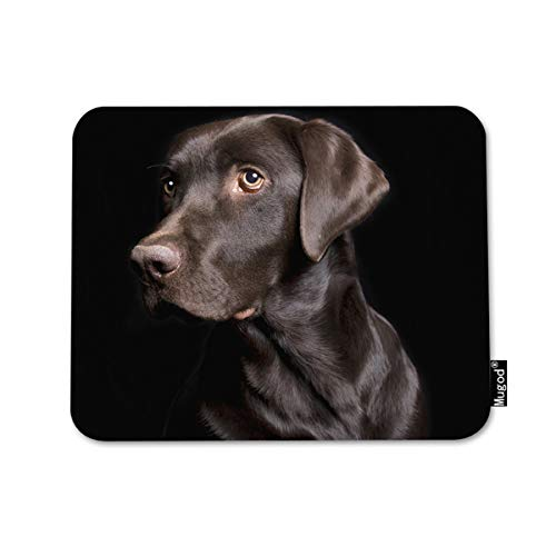 Mugod Mouse Pad Retriever Brown Dog Low Key of Chocolate Lab on Black Decor Gaming Mouse Pad Rectangle Non-Slip Rubber Mousepad for Computers Laptop 7.9x9.5 Inches