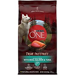 10 Best Dry Dog Foods Reviews and Buyer Guide 2019