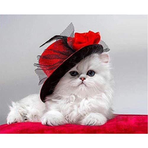 UOOOOD Malen nach Zahlen DIY Ölgemälde für Erwachsene anfänger Dekoration-Katze im roten Hut