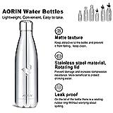 Aorin 750ml Trinkflasche (Silber) - 2