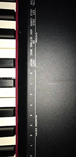 Roland A-88 MIDI Keyboard Controller - Black