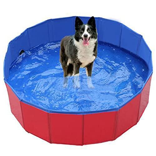 YSPS Piscinas de Perro Plegable Piscina para Mascotas Piscina Piscina Piscina Peña Piscina Piscina Bañera Tina de baño Poisco de plástico Duro para Perros Gatos y niños 160x30cm