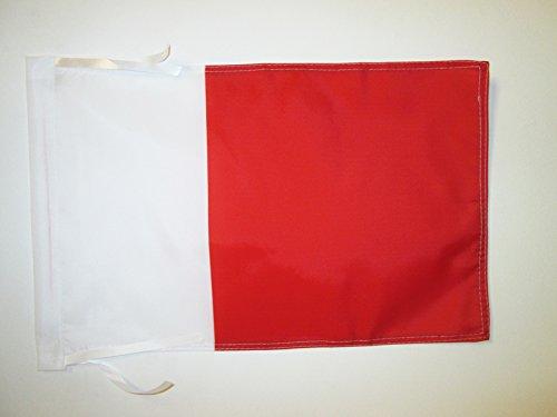 AZ FLAG Flagge EMIRAT Dubai 45x30cm mit Kordel - Dubai Fahne 30 x 45 cm - flaggen Top Qualität