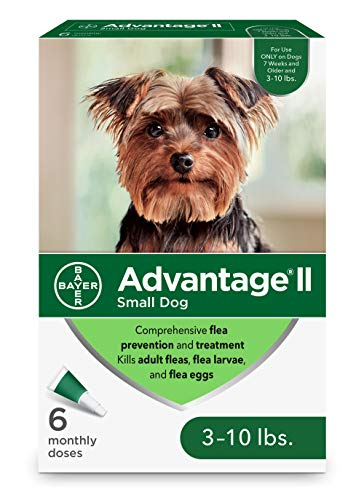 Advantage II 6-Dose Topical Flea Treatment for Small Dogs, Topical Flea Treatment for Small Dogs 3-10 Pounds