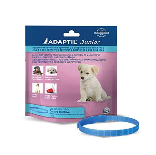 ADAPTIL Junior - Antiestrés para cachorros - Adaptación al hogar, Aprendizaje, Educación, Lloros, Quedarse solo - Collar para Cachorros