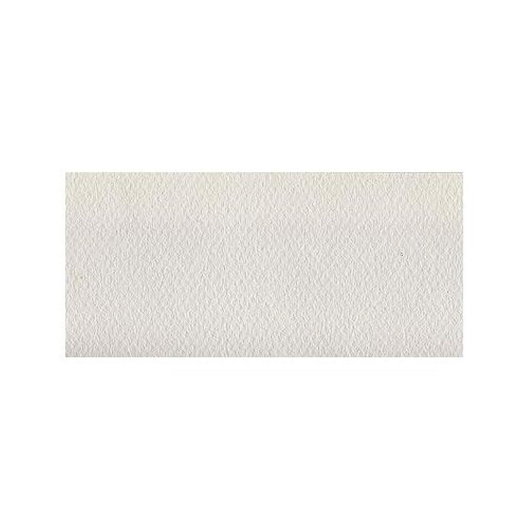 Mi-Teintes Paper - White (335) - 19